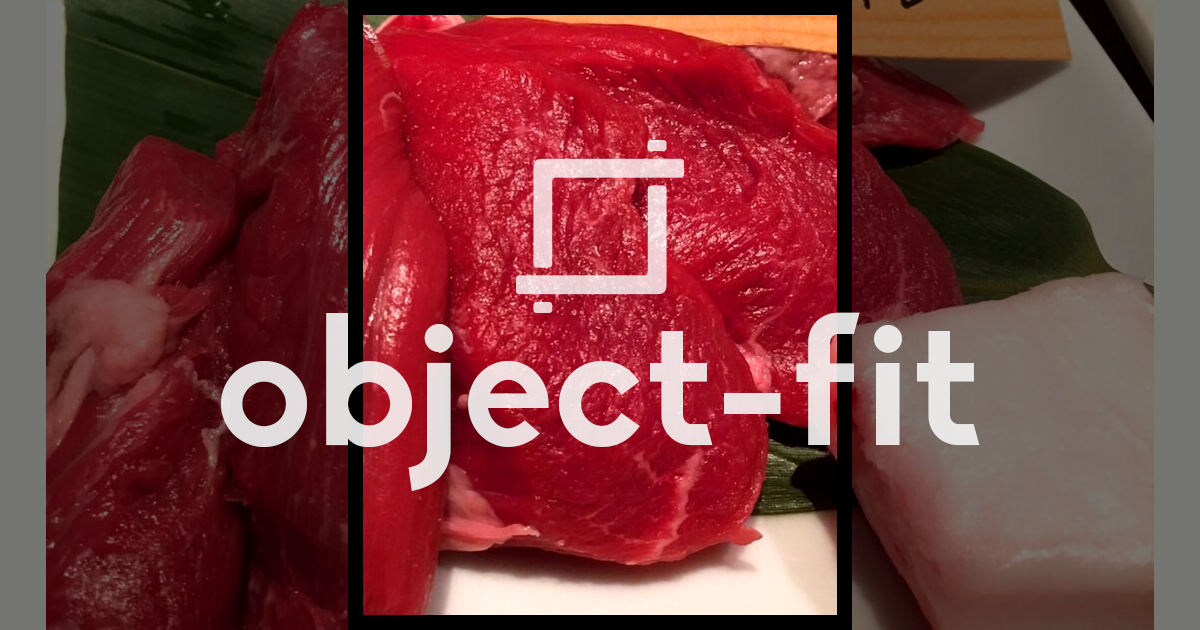 object-fit